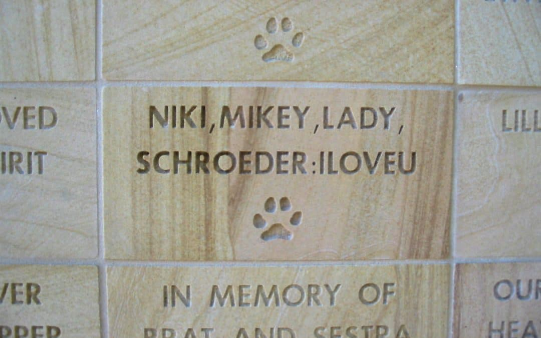 Rancho Coastal Humane Society donor wall